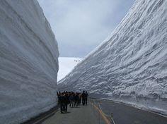 Paredões de neve da Rota alpina de Tateyama Kurobe - Japão