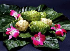 Testimonials abound detailing the amazing healing experienced by people who have added The Noni Fruit Leather to their daily diets or even just relied on noni for the occasional illness or injury, from torn ligaments to lower blood sugar and chronic pain management, noni has been shown to have remarkable healing properties.