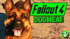 FALLOUT 4: Dogmeat COMPANION Guide! (Everything You Need to Know About Dogmeat) - YouTube