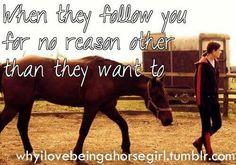 <3 all of mine do...it is so cute...love it