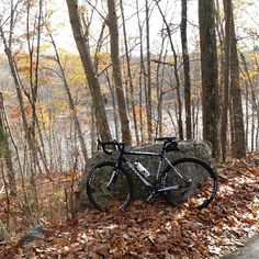 Leaves are almost gone in southern New England.  Cycling