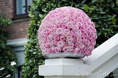 Pink rose flower ball a large outdoor festive centerpiece standing on a white fence with a green bush and a brick wall building in the background. A beautiful pink kissing ball for a wedding