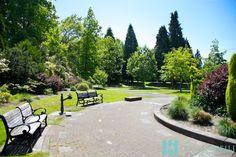 Yes Virginia, the Eastmoreland Garden is this effortlessly stunning! Eastmoreland Neighborhood, Portland, Oregon. Photographed by @KandyPhoto
