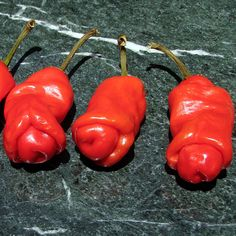Peter Pepper. 10,000 - 23,000 Scoville Units. Capsicum annuum. The Peter pepper (sometimes referred to as the penis pepper) is an heirloom chili pepper that is best known for its phallic shape. It occurs in red and yellow varieties. The pepper is considered very rare, and its origin is unknown. The pepper is most commonly grown in eastern Texas and Louisiana, although it is grown in Mexico, as well.