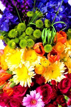 Nature's rainbow flower color (¯`'•.¸de l'arc-en-ciel¸.•'´¯)
