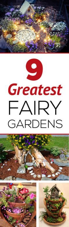 Starting a fairy garden or what to make improvements to yours?  Learn from the best!  Check out this website which is full of great gardening ideas.