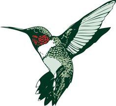 hummingbird-clipart-Ruby-throated-