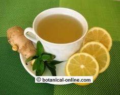Infusión de jengibre menta miel y limon: Los componentes activos del jengibre (shagoles y gingeroles) tienen propiedades estimulantes, antivomitivas, antiinflamatorias, antibacterianas, analgésicas, digestivas y afrodisíacas...