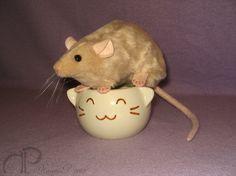Beige Rat Plushie by Morumoto on Etsy, $16.00