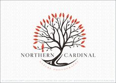 Logo for sale: Sleek, bold and modern tree logo design. This unique tree logo features a stylish bare tree design with the addition of the bold red leaves that frame the exterior of the tree and single red cardinal bird perched on one of the bare tree branches. This eye catching tree logo with grab and demand attention.