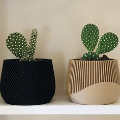 Black Planters, Modern Planters, Wood Planters, Cactus Planters, Succulent Pots, Plant Pots, Succulents, 3d Printed Objects, Bowl Designs