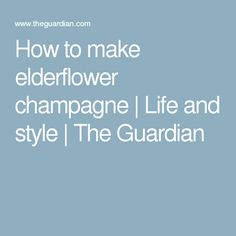 How to make elderflower champagne | Life and style | The Guardian