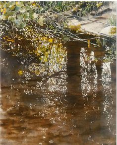 shallow stream with marsh marigolds 5 x micheal zarowsky watercolour on arches paper private collection Marsh Marigold, Arches Paper, Shallow, Watercolour, Paintings, Collection, Art, Pen And Wash, Art Background