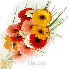 Find and share gifts idea for that unique person for who you want to buy gifts. Infibeam.com available gifts store in India online portal help you to get the gifts ideas for special occasion, festivals, wedding and send gift to india any person.