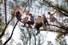 Rope Course in Cape Winelands   Family Activity Near You - Dirty Boots Adventure Activities, Family Activities, Big Red Barn, Ropes Course, Family Outing, Family Adventure, Business For Kids, Team Building, South Africa