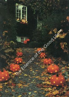 Fall Decoration - From THE ESSENCE OF THE GOOD LIFE™     http://www.pinterest.com/ConceptDesigner/   https://www.facebook.com/pages/The-Essence-of-the-Good-Life/367136923392157