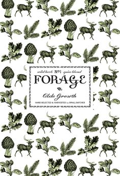 FORAGE: Wild Herb & Spice Blend on Packaging Design Served