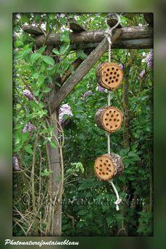 Construire des gîtes à insectes.