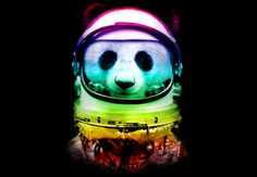 Space panda by Ingkong on DesignByHümans – http://goodshirtdesign.com/shirt/space-panda