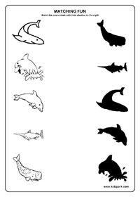 Sea Animals Worksheets,Play School Activity Sheets,Matching Worksheets