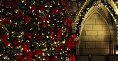 Ottawa Stairwell Caroller Christmas concerts are coming!! Here's a live performance of a NEW arrangement of Silent Night - Youtube Video,