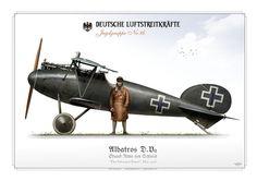 Albatros D.V.a