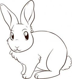 how to draw a bunny rabbit step 5