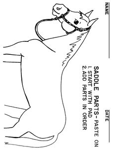 booklet pg 14 - Saddle the Horse: paste the tack onto the horse.  The rest of this workbook can be found at; http://www.pinterest.com/HorseInterests/illustrations-handouts/