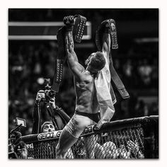 Conor Mcgregor Wallpaper, Mcgregor Wallpapers, Conor Mcgregor Quotes, Ufc Conor Mcgregor, Ufc 205, Conner Mcgregor, Boxe Mma, Notorious Conor Mcgregor, Ufc Boxing