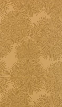Hooked on Walls Jealous Walls Wallpaper 77016  Pattern Repeat 64cm with a Half Drop Match  £54.85