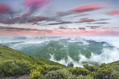 Tamalpais Glory - Marin County, California, by Patrick Smith