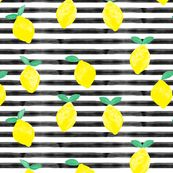 so fresh lemons on black watercolor stripes by littlearrowdesign