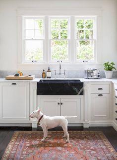 great kitchen great dog.