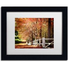 Trademark Fine Art Autumn Moods Canvas Art by Beata Czyzowska Young, White Matte, Black Frame, Size: 11 x 14