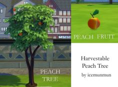 Harvestable Peach Tree by icemunmun at Mod The Sims • Sims 4 Updates