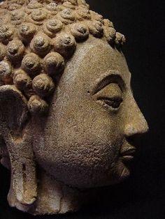 Sakyamuni Buddha Head Statue