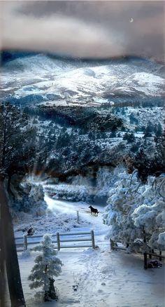 Winter song...beautiful!