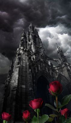 Tower Roses surround the castle in La Belle et La Bete...they must never be picked...