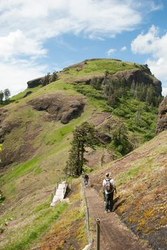 Saddle Mountain Distance: 5.5 miles Elevation Gain: 1,600 ft. Location: Saddle Mountain State Park, Oregon Coast Range