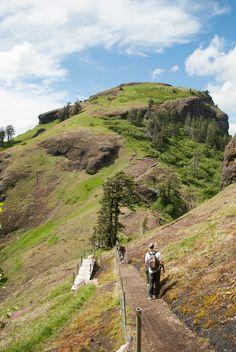 Saddle Mtn SP: round trip to top- 5.5 mi: elevation gain: 1,600' OR Coast Range