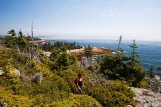 Ready to jump into nature? Here's how to pick the right national park for your next vacation.