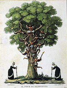 Il Noce, le Streghe, Wotan ed altri misteri. Leggi qui: http://www.cavernacosmica.com/simbolo-e-significato-dellalbero-di-noce/
