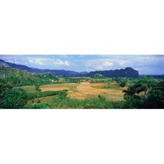 A panoramic view of the Valle de Vinales in central Cuba Canvas Art - Panoramic Images (36 x 12)