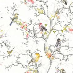 Ornithology Wallpaper in White by Statement - seen at www.allinterno.com