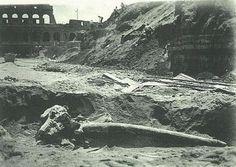 Resti di un elefante preistorico nello scavo accanto al Colosseo Anno: 23 maggio 1932