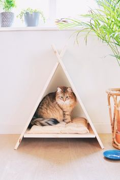 Make your own cat-tipi! - Make your own cat-tipi! Cat Safe Plants, Cat Plants, Cat Tipi, Diy Teepee, Cat Toilet Training, Serval Cats, Cat House Diy, Bunny Cages, Herding Cats