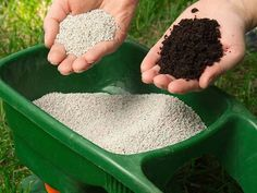 How to Fertilize Grass in Spring Properly | Prepper Universe