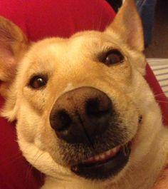 Say cheese! http://ift.tt/2u75ZHs
