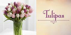 Resultado de imagem para tulipas e rosas