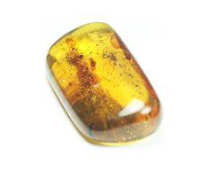 Ambra - amber - Scheda Scientifica - Pietre Preziose - Pietre Semipreziose - Minerali.it